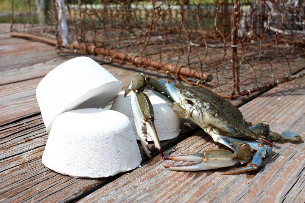 Kepley's compressed bait attracts crabs, lobsters