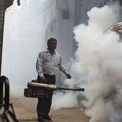 iStock photo of DDT spraying in India