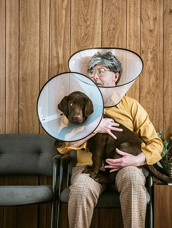Man and dog with cones on heads
