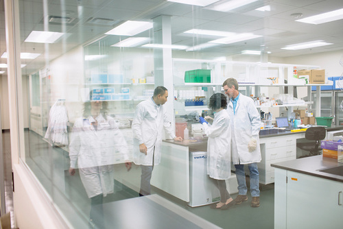 Elo plant researchers confer in lab.